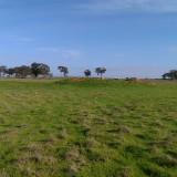 Farm-shot